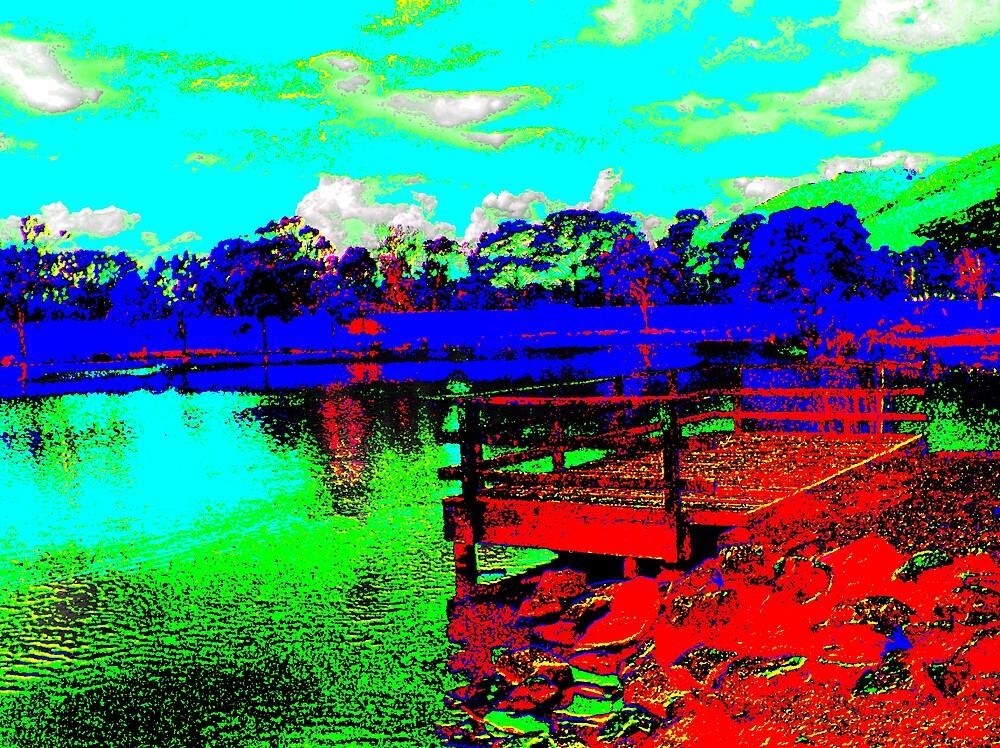 Liverpool Rd. Retarding Basin, Vic. by Paul Kiesskalt