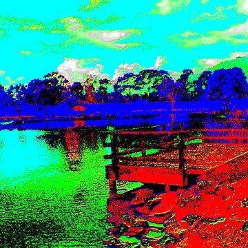 Liverpool Rd. Retarding Basin, Vic. by PaulK