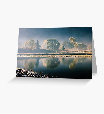 Trees By The Roadside Greeting Card