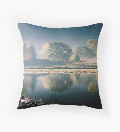 Trees By The Roadside Throw Pillow