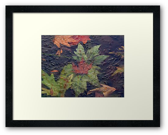 Frozen autumn by Peco Grozdanovski