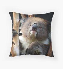 Koala 1 Throw Pillow