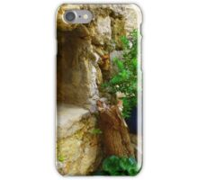 The Niche.....................................Eze iPhone Case/Skin