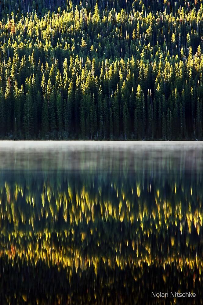 First Light Reflections by Nolan Nitschke