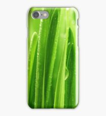Blades of grass show with a macro lens iPhone Case/Skin