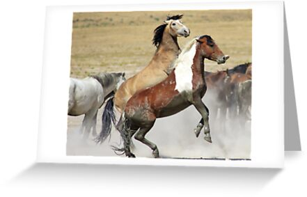 Graceful and Powerful by Gene Praag