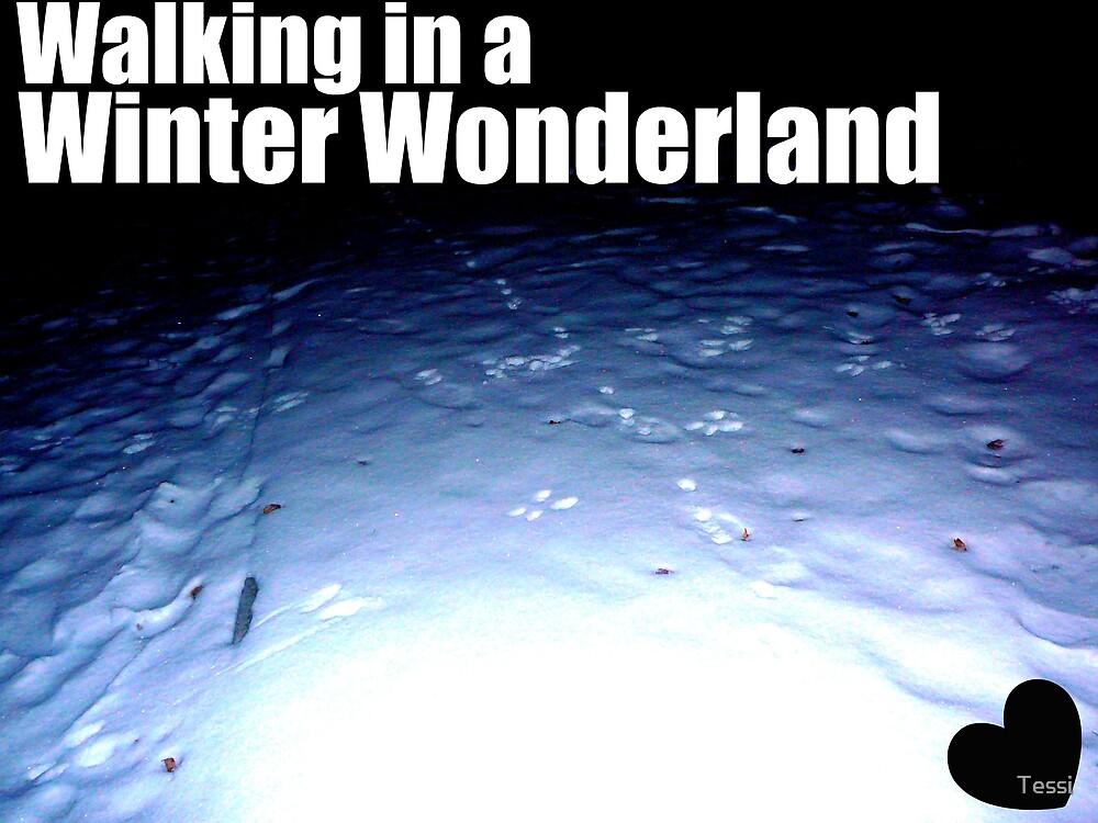 Winter Wonderland by Tessi