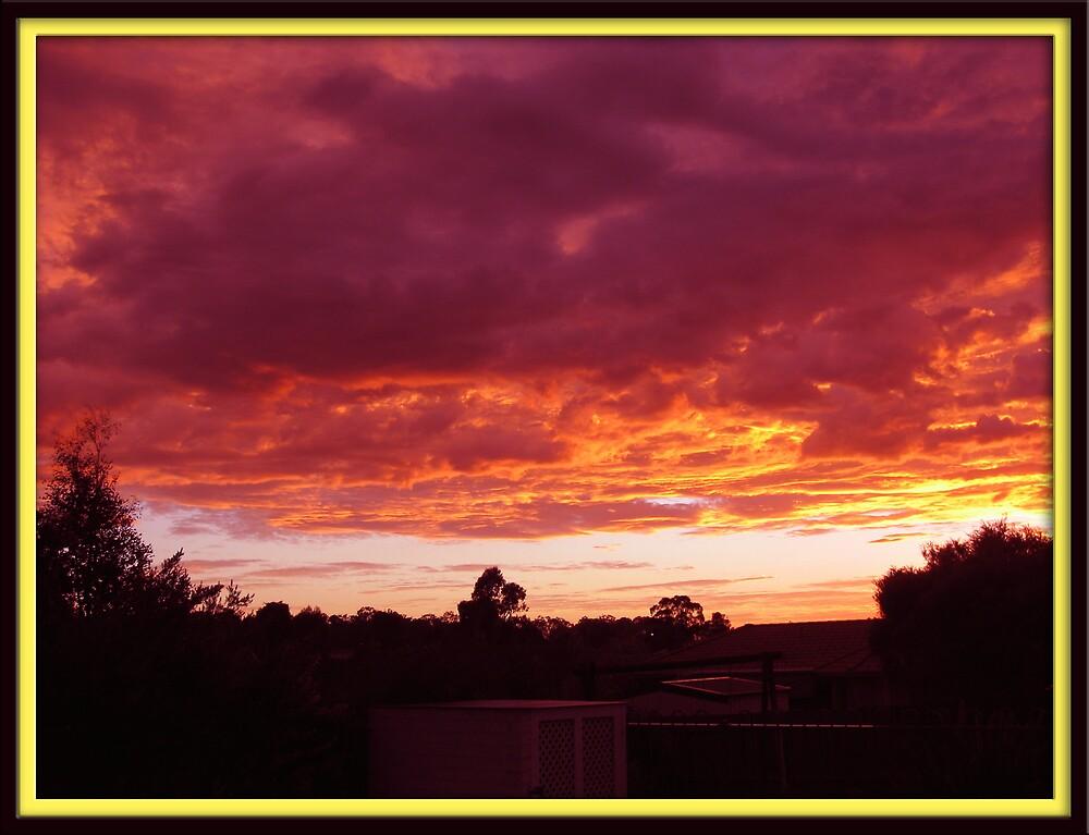 My Back Yard Sun Set. by EmilyWinter