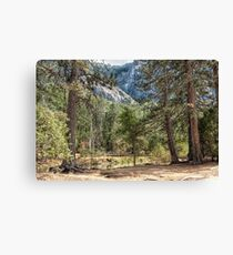 Land of Yesterday Canvas Print