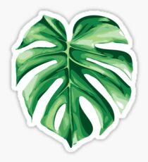 Monstera Sticker