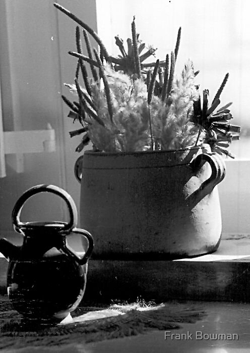 Antiques at the Window by Frank Bowman