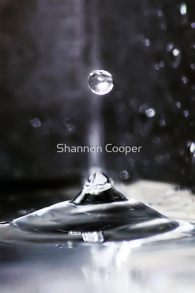 Drop by Shannon Beauford