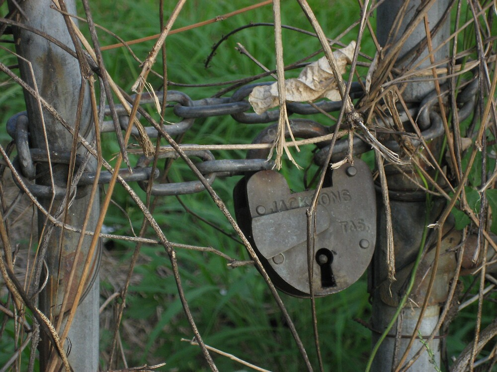 Old padlock by Sarah Cole