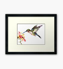 Flying Hummingbird and Flower Framed Print