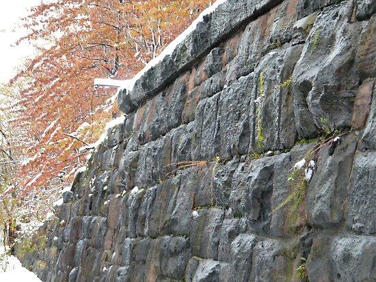 Sixth Street Embankment in Snow, Former Pennsylvania Railroad Embankment, Jersey City, New Jersey by lenspiro
