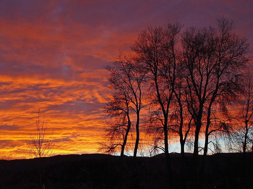 River Valley Ranch Sunset During CA Fires by firegirl445