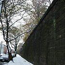 December Sixth Street Embankment in Snow, Abandoned Pennsylvania Railroad Embankment, Jersey City, New Jersey by lenspiro