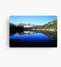 Morning Rewards Canvas Print
