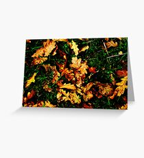Autunm Leaves Greeting Card