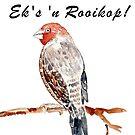 Pasop! Ek's 'n Rooikop! by Maree Clarkson