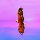 Eagle Series Painterly by Deborah  Benoit