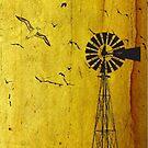 Verlate vlaktes van die Karoo by Maree Clarkson