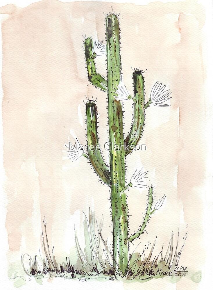 Cactus - Cereus jamacaru  by Maree Clarkson