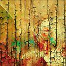 Wood Abstract by Deborah  Benoit