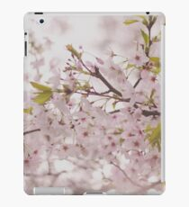 Delicate Spring Cherry Blossoms iPad Case/Skin