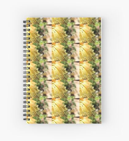 The Plight of our Honey Bees Spiral Notebook