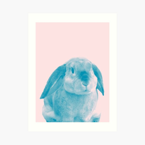 Rabbit 04 Kunstdruck