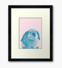 Rabbit 04 Gerahmtes Wandbild