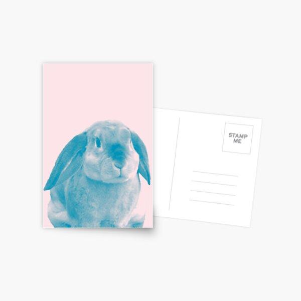 Rabbit 04 Postkarte
