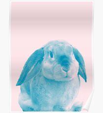 Rabbit 04 Poster