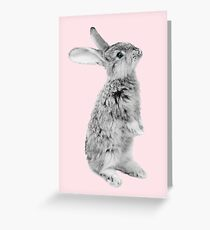 Rabbit 08 Grußkarte