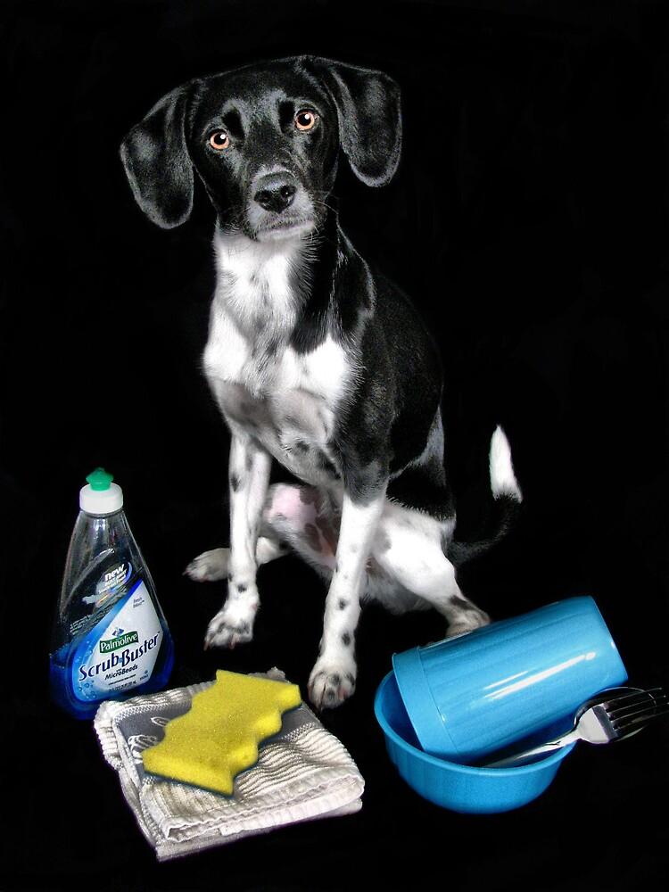 Doggy Wash by scannermom
