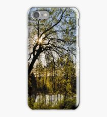 Weeping Willow Sunrise Landscape iPhone Case/Skin