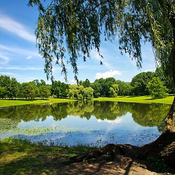 Summer in the Park by rollosphotos