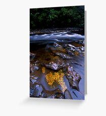 Quartzite Jewels, Franklin River Greeting Card