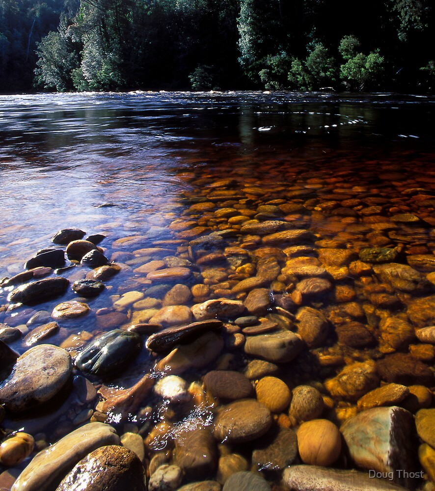 Lower Franklin River by Doug Thost