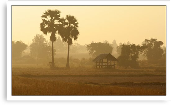 Thai Misty Morning by fred  funkeldink