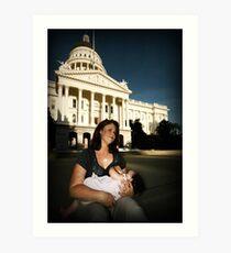 legislation Art Print