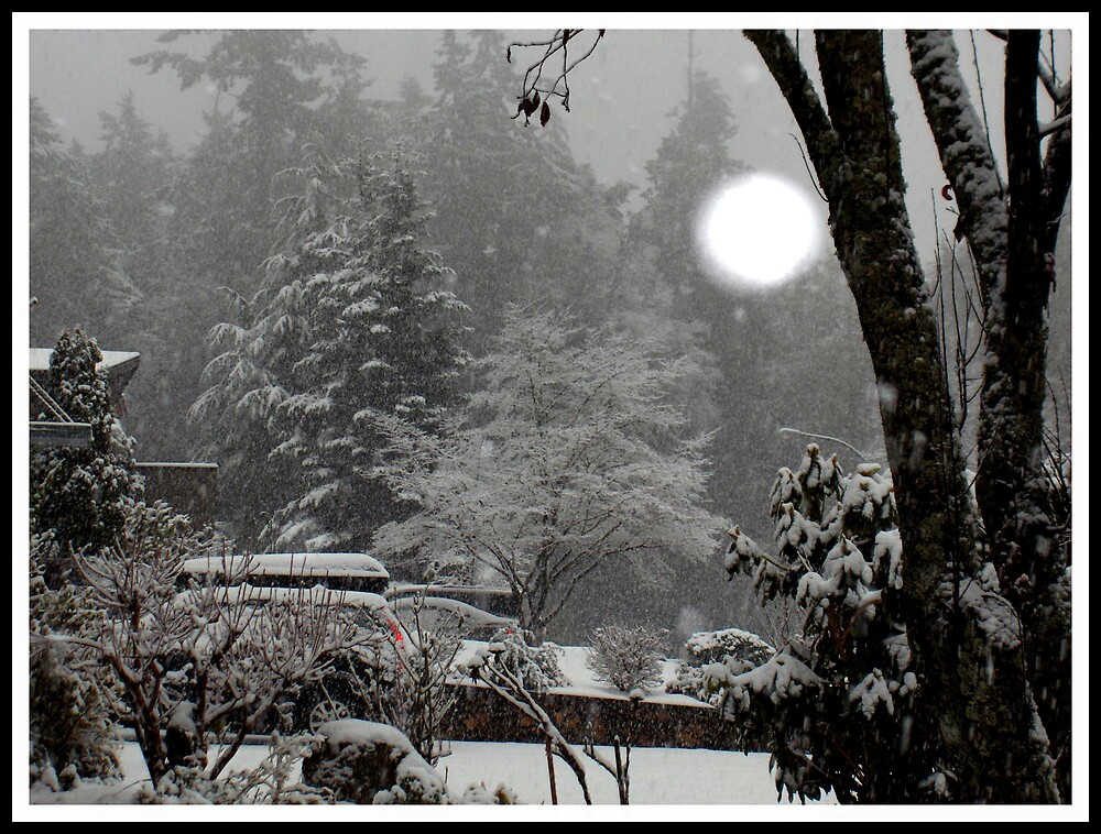 first snow fall of the season by hanne