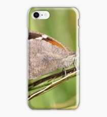 American Snout Butterfly iPhone Case/Skin