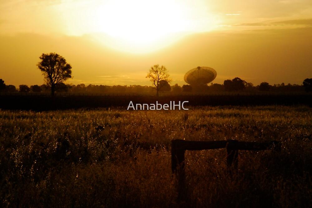Peace by AnnabelHC