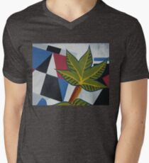 Casa Claire Men's V-Neck T-Shirt