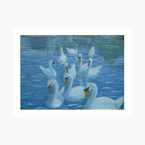 River Nene Swans Art Print