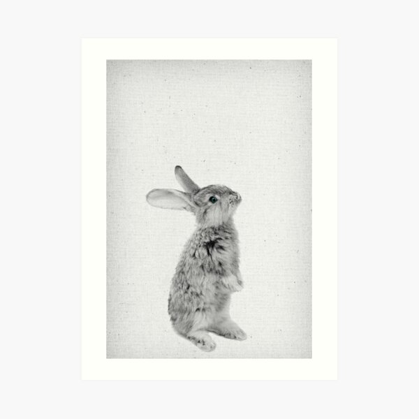Rabbit 11 Kunstdruck