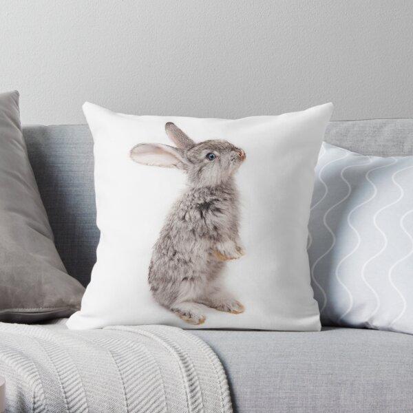 Rabbit 12 Dekokissen