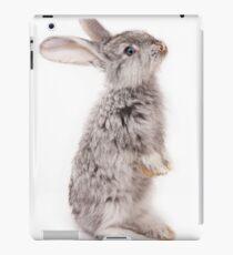 Rabbit 12 iPad-Hülle & Skin